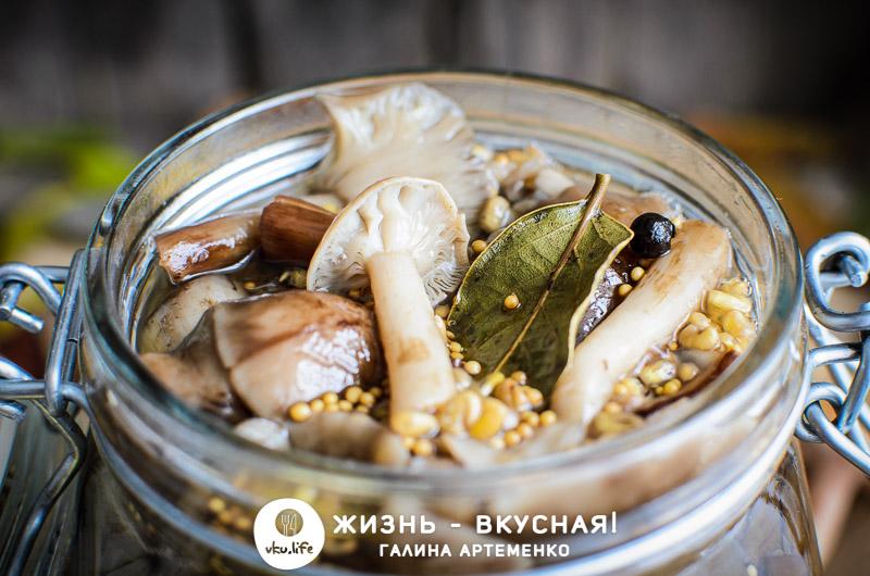 простой рецепт маринованных грибов опята